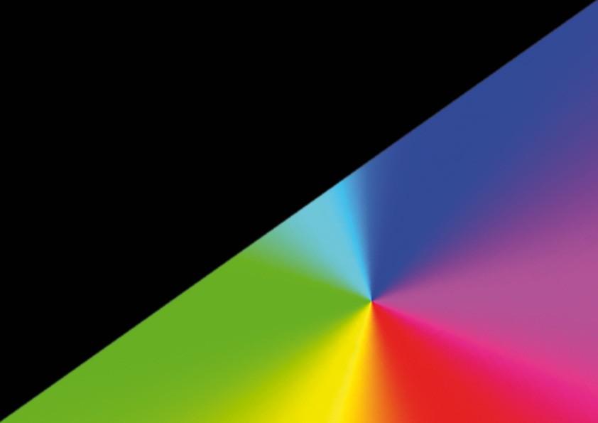 Noir Multicolor