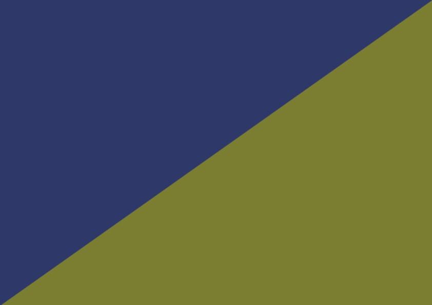 Marine Kaki